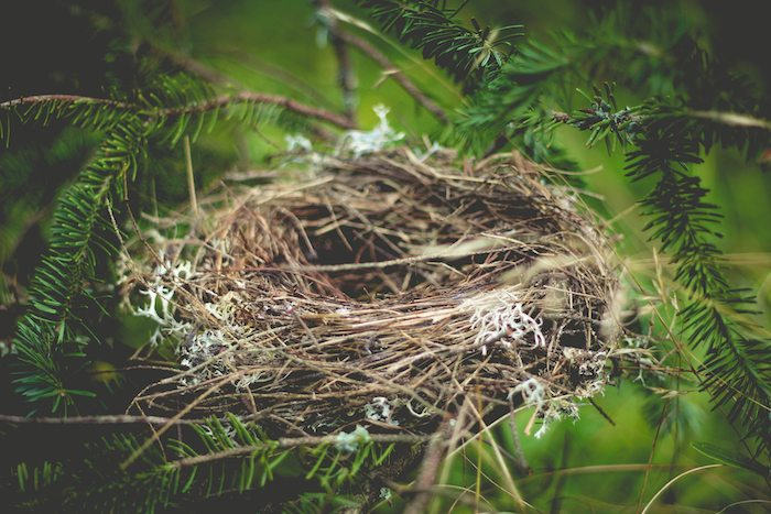 6 Ways of Coping with Empty-Nesting (Part 1 of 2)